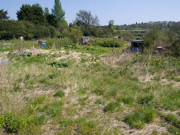 allotmentdevelopment2-web